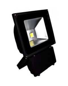 Dabmar DF-LED5967 1 Light Flood Light