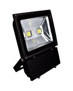 Dabmar DF-LED5968 2 Light Flood Light