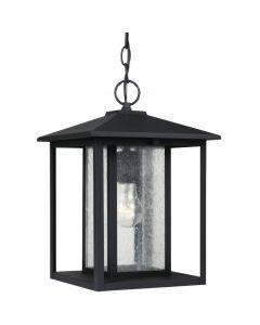 Sea Gull Lighting 62027 Hunnington 1 Light Hanging Lantern